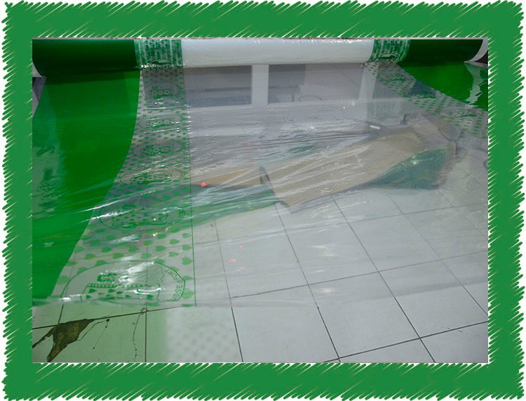 sale water transfer printing film PE Paint Protection Plastic Film