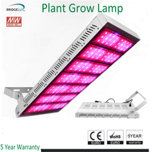 Factory Price 800W Medical Plant LED Grow Light ,High Power 500W LED Plant Grow Light