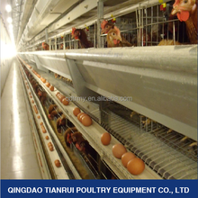 H type automatic day old layer chicks cage for layer