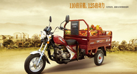 Loncin 125cc/150cc/175cc adult heavy load diesel cargo 3 wheel motorcycle/trike