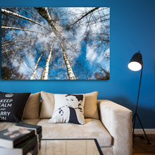 Modern Art Landscape HD Print on Canvas Forest Wall Picture for Living Room