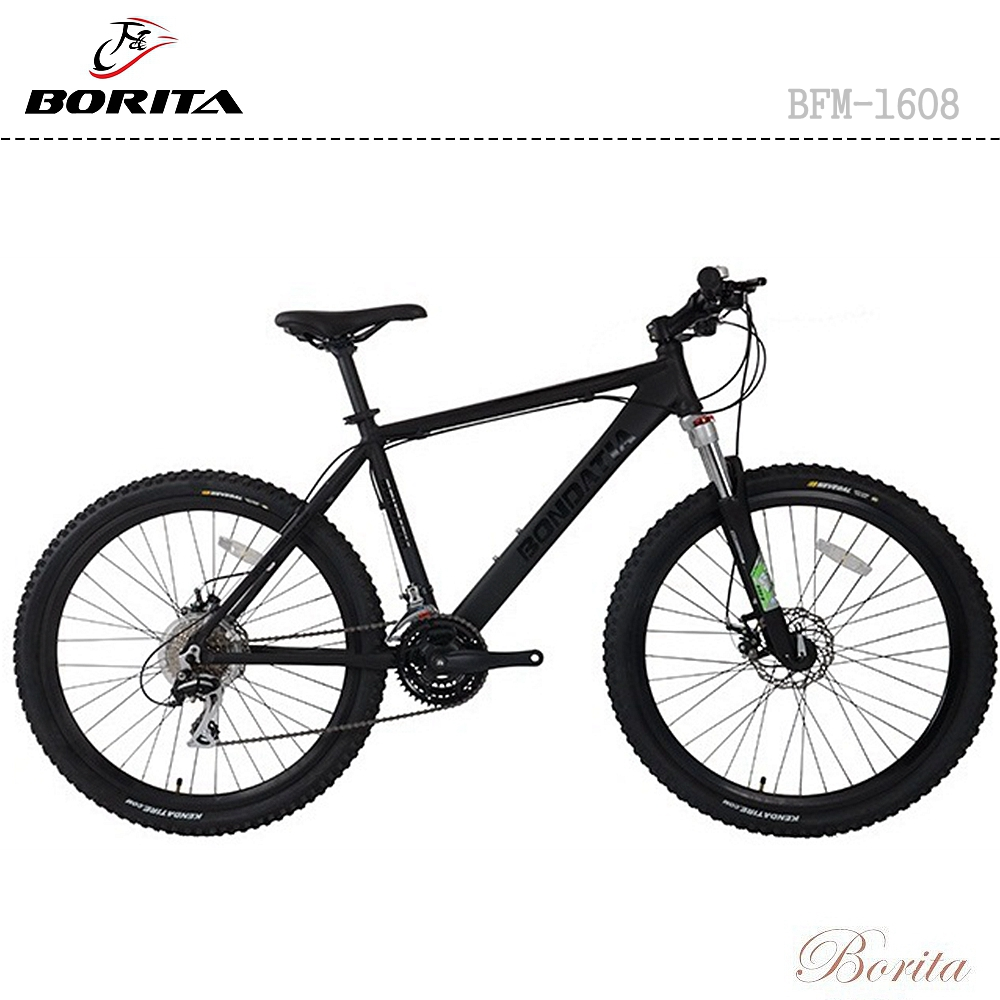 Hot Sale BFM-1608 Cheap Prices Mountain Bycicle Mountain Bike Made in China