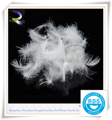 Washed Feather 2-4cm for sale White Goose Down feather