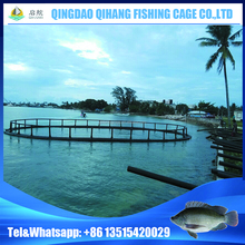 Offshore Floating Farming Fish Pomfret Cage