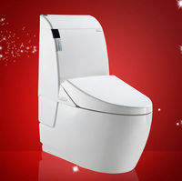Ladies Wc S-Trap Low Tank Toilet/Autoamtic Seat Intelligent Water Save Closet