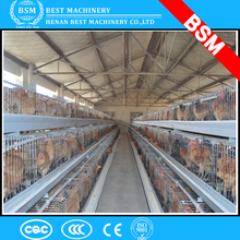 Africa Popular Anti-rust Metal Egg Layer Chicken Battery Cage