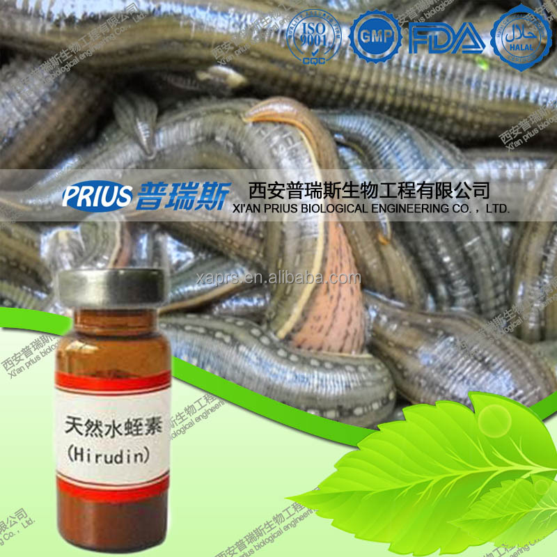 GMP certification pure leech extract powder Hirudin