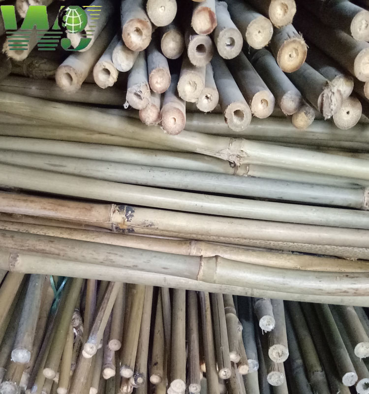 WY-074 2017 natual agriculature bamboo poles for trees supporting