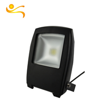 Economical Custom Design 3000 Lumen Led Flood Light