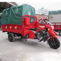 300cc trike scooter/250cc motorcycle trike/motorcycle with roof