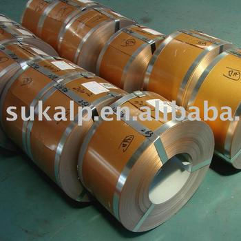 Prepainted Steel Strips