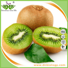 Certified Manufacturer Natural Kiwi Fruit Extract 98% Thaumatin,Kiwi Fruit juice powder