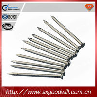 polished common iron nail--shanxi goodwill
