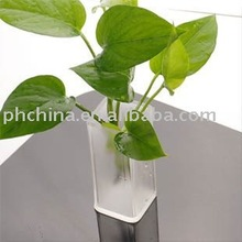 AFV-058 Mini Vertical Acrylic Flower Display
