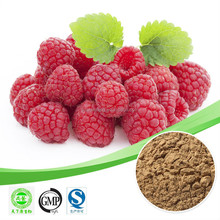 top quality raspberry extract natural raspberry extract powder 10:1 raspberries extract