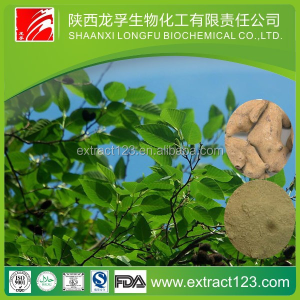 Manufacturer sales Tannin Extract Powder