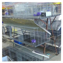 Great Quality Commercial Rabbit Cage /Child and Mother Rabbit Cage With Cheap Price