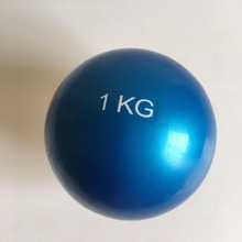 China hand hold soft 1kg weight ball wholesale