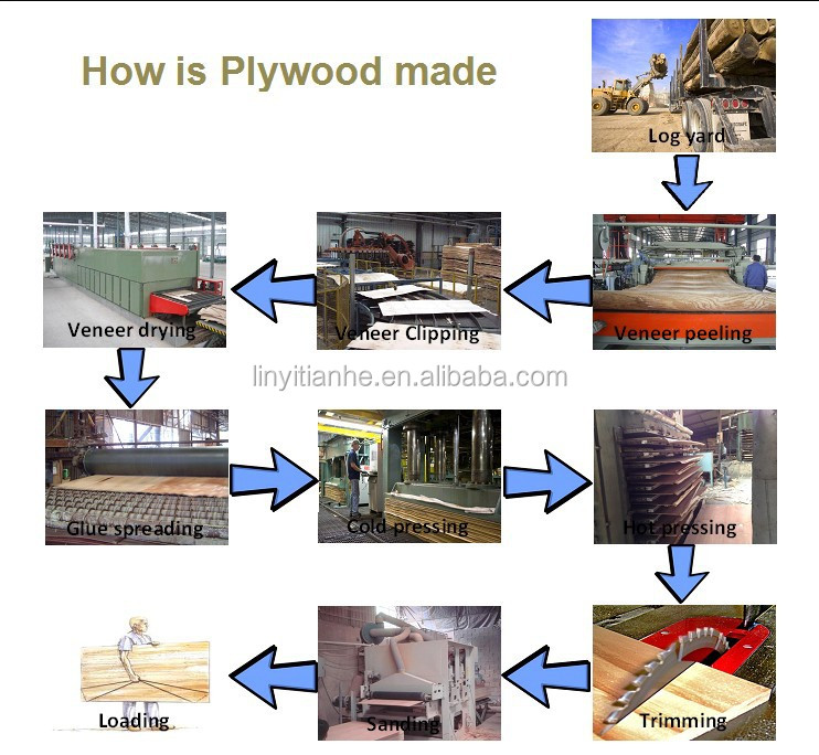 plywood production line,film faced plywood production line,plywood machine