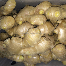 Four Seasons Supplier Wholesale Of Fresh And Air-Dried Ginger