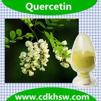Fermentation Powder HPLC 95% and 98% Quercetin Dihydrate