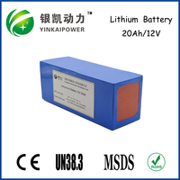 OEM small 12 volt lithium ion rechargeable battery pack for CCTV Camera/LED strip light/solar energy storage