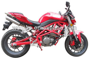 2013 New 300cc High Quality Racing Bike (WJ300R)
