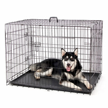 Metal Wire Foldable Black Color Large Dog Cage
