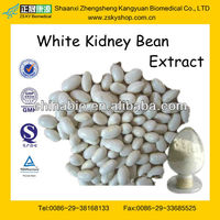 GMP Certified Manufacturer Supply Natural White Kidney Bean Plant Extract