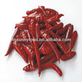 ISO9001 FDA HACCP OU Certificated Small Red Tianjin Chili