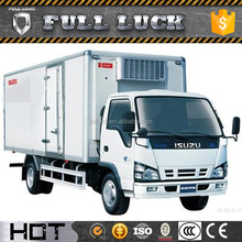 China Manufacturer F series electric mini cargo truck