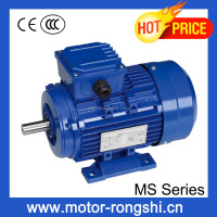 universal electric fan motor