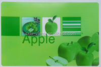 Promotional plastic table mat/high quality PP placemat