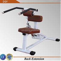 Back extension gym machine Professional Sports Equipment (DSY-H08)