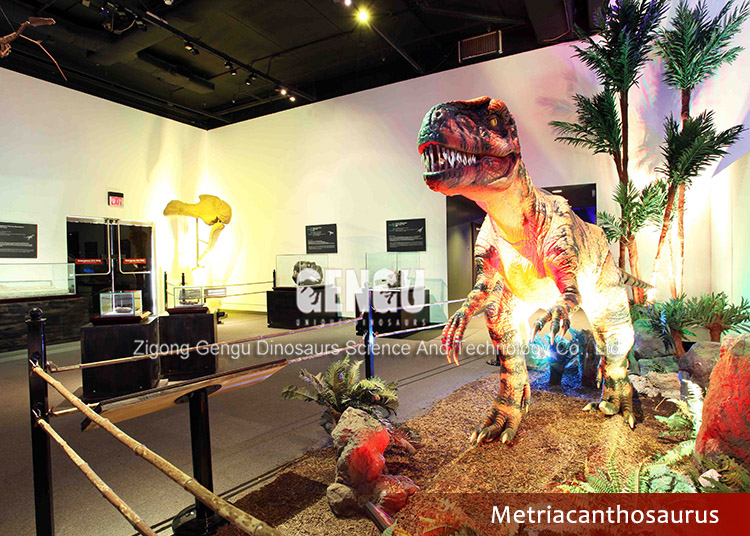 dinosaur displayed Indoor play ground equipment