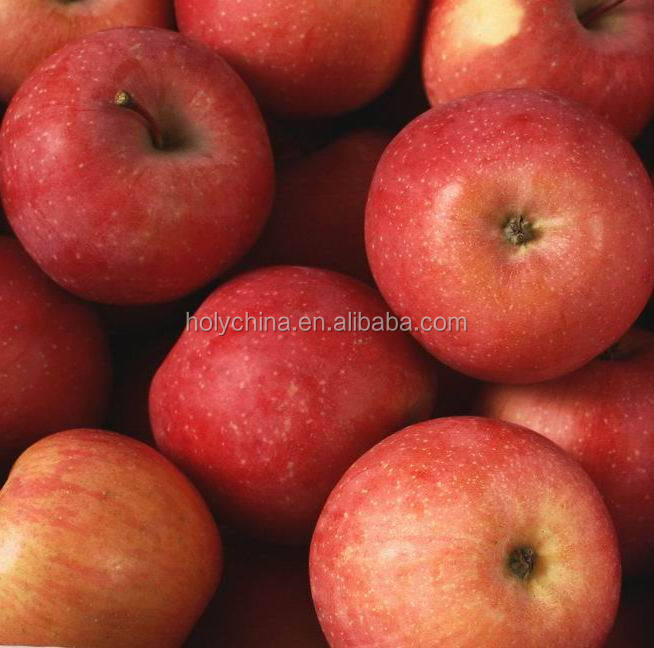 hot sale high quality import apple fruit