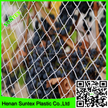 Supply 100% virgin HDPE knitted plastic net/anti bird net /white color bird protection mesh