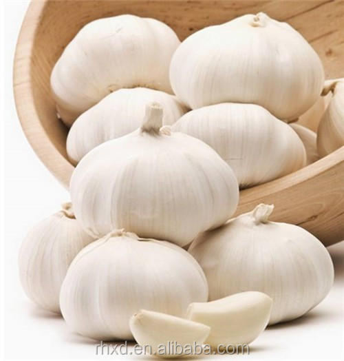 2017 new crop chinese jining top quality fresh garlic