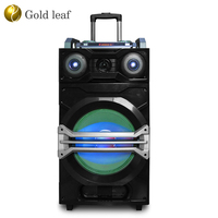 "Floor standing trolley home theater system speaker dj bass speaker 8"" subwoofer 100 watt LED speaker prices wholesale Guangzhou"