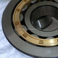 overstock clearance flat cage full complement cylindrical roller bearing NU220 NU400 nn3019k China kg bearing