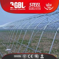 greenhouses building material made in China/galvanized steel pipe used for greenhouses