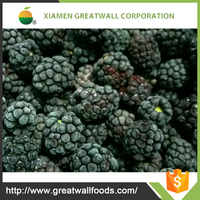 china supply iqf frozen black berry
