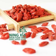 ningxia chian certified organic goji berry of all grades