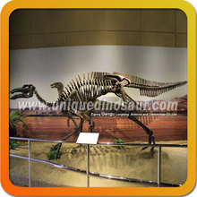 Simulation skeleton amusement park original size dinosaur fossils