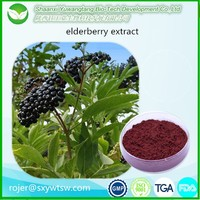 Natural Anthocyanidin 25% elderberry extract