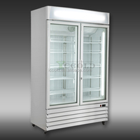 300-800 liters HOT SALES DOUBLE GLASS DOORS ICE CREAM DISPLAY FREEZER