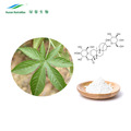 Plant Extract Sweet Tea Leaf P.E. Rubusoside Powder 70%80%85% Supplement