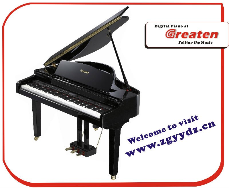 Grand Digital Piano PK-1015