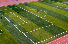 Physical Culture Institute Artificial Grass Fake Synthetic For Football Field With 12000Dtex