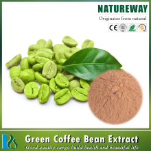 Free sample 50%-60% Chlorogenic Aicd green coffee bean extract powder